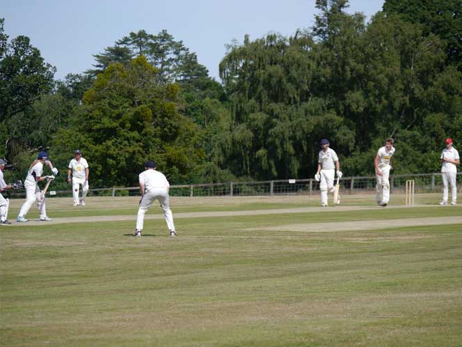 Newenden Village Cricket
